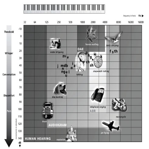 The Human Hearing Chart shows human hearing in hertz frequencies (with real-life examples) and the range that audiograms test.